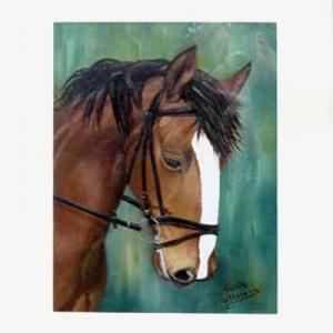 Portrett of a horse